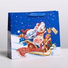 Пакет ламинированный горизонтальный «Новогодние сани», ML 8 × 27 × 23 см