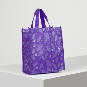Bag the Leaves, 25*13*28 the division without a zipper, purple
