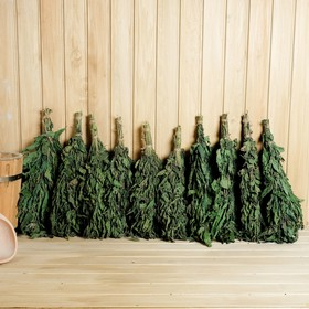 A set of brooms for a bath of nettles in a box, 10 PCs