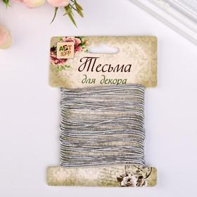 "Elastic decorative rubber band ""Metallic round"" wind 5 m width 0.1 cm silver"