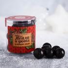 Чёрная смородина в тёмном шоколаде «Тепла и уюта», 100 г