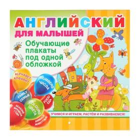 Английский для малышей. Все обучающие плакаты под одной обложкой. Дмитриева В. Г.