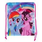 Мешок для обуви 320*270 My Little Pony MPFP-UT1-883xs