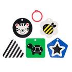 Развивающая игрушка по методике Г. Домана карточки на кольце «Зверята» 5шт, МИКС - фото 105528202