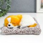 "Fluffy ""Dog on the cushion"" 7х18х15 cm"