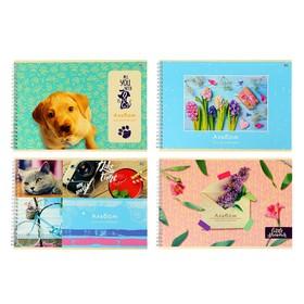 Альбом для рисования А4, 48 листов на гребне «MIX-Девочки», обложка мелованный картон, блок 100 г/м², 4 вида МИКС