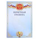 "Certificate of merit ""Symbols of Russia"" Cup"