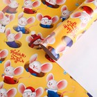 Бумага упаковочная глянцевая «Сырный домик», 70 × 100 см