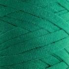 """Пряжа-шнур """"Ribbon"""" 40% полиэстер, 60% хлопок 125м/250гр (759 зелёный) - фото 282123288"""