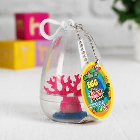 """Растущие игрушки """"Коралл в пластиковом яйце"""" 6×6×8 см МИКС"""