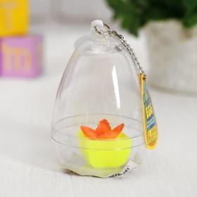 """Растущие игрушки """"Цветок в пластиковом яйце"""" 6×6×8 см МИКС"""
