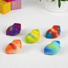 """Растущие игрушки """"Рыбки в цветной ракушке"""" 3,5×3,5×5,5 см МИКС"""
