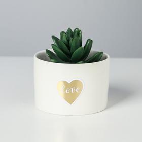 Керамический горшок «Счастье», 5,5 х 8 см