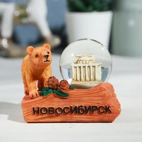 Снежный шар «Новосибирск. Театр оперы и балета»