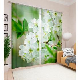 Фотошторы «Яблоня в цвету», размер 145 х 260 см, 2шт., габардин