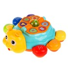 Обучающая игрушка «Жук», 12 стихов М. Дружининой, 12 песенок - фото 105528296