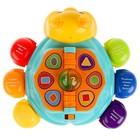 Обучающая игрушка «Жук», 12 стихов М. Дружининой, 12 песенок - фото 105528297