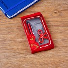 Gift set 2in1 (pen, keychain)