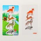 Игра на липучках «Лесные животные» - фото 105527084