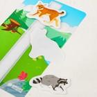 Игра на липучках «Лесные животные» - фото 105527085
