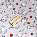 Ткань пэчворк «Любимый кот», 1 лоскут,18 х 24,5 см