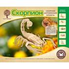 Модель деревянная сборная «Скорпион»