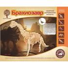 Модель деревянная сборная «Брахиозавр»