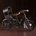 "Souvenir metal ""Bicycle rickshaw"" 31х13х21 cm"