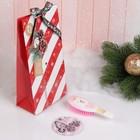 Подарочный набор «Новый год - Мишка», 2 предмета: зеркало, массажная расчёска