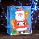 Пакет подарочный «Письмо от Деда Мороза», 18 х 22,3 х 10 см