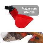 Поилка чашечная для домашней птицы, со штуцером под трубку