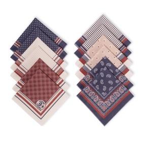 Платки носовые мужские «Этель», размер 30х30 см, (набор 12 шт,) принт МИКС, 100% хлопок