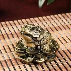 """Netsuke Ltd bronze """"Money toad on the pile of coins with a bullion"""" 5,5х7х6 cm"""