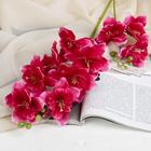"""Цветы искусственные """"Дельфиниум волнистый"""" 7,5*82 см, малиновый - фото 4455657"""