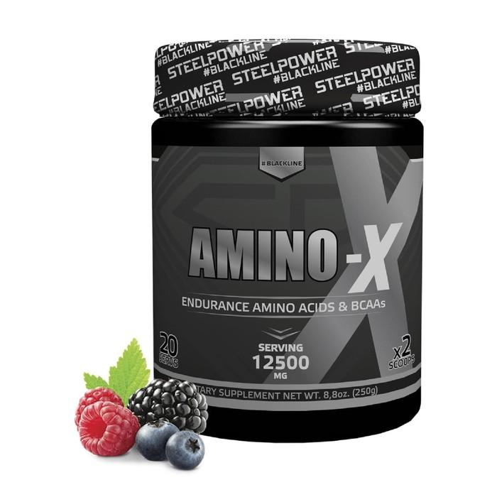 AMINO-X - 250 гр, вкус - Лесные ягоды