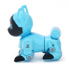 Робот-собака радиоуправляемый «Паппи», световые и звуковые эффекты, работает от аккумулятора, цвет голубой - фото 187360