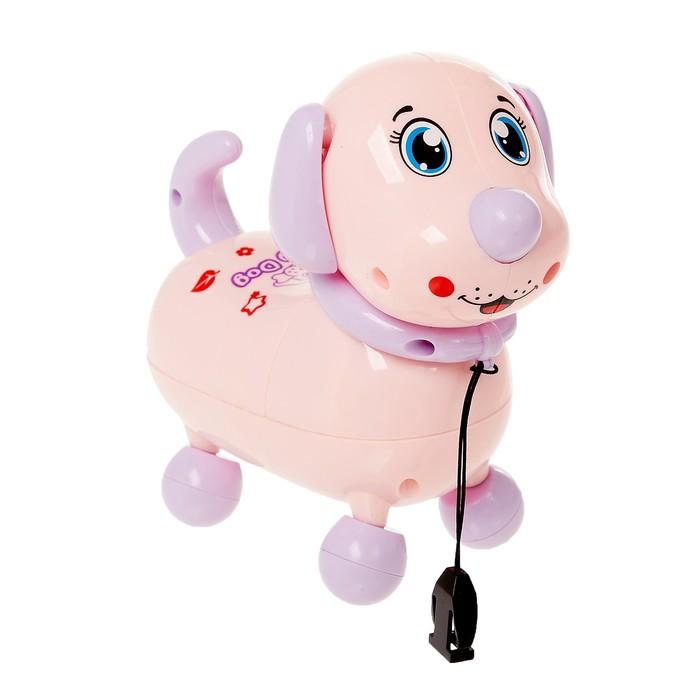 Развивающая игрушка «Милый пёсик», световые эффекты, МИКС