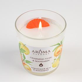 Scented candle Aroma Harmony