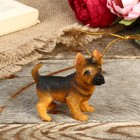 "Decorative figurine ""Puppy Shepherd"" 6.5 cm"
