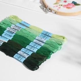 Набор ниток мулине, 8 ± 0,5 м, 9 шт, цвет зелёный спектр