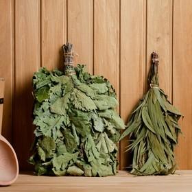 A set of brooms for a bath EXTRA Oak + eucalyptus