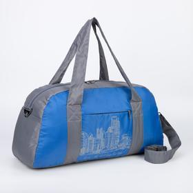 Сумка спортивная, отдел на молнии, наружный карман, цвет голубой/серый