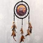 """Dreamcatcher """"Fire eagle"""" d=20 cm"""