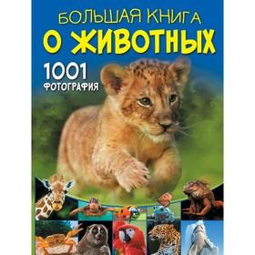 Большая книга о животных. 1001 фотография. Ермакович Д. И.