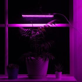 Светильник для растений, 6 Вт, 7 мкмоль/с, длина 300мм, присоска на стекло, универсальный