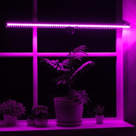 Светильник для растений, 10 Вт, 11 мкмоль/с, длина 600мм, присоска на стекло, универсальный   465989