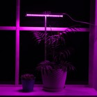 Lamp for plants, 6 W, 7 µmol/C, length 300 mm, installation height 230-950mm, pot 46598