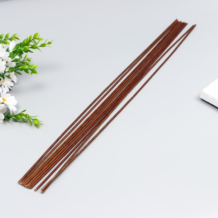 Набор проволоки для флористики d-3,00мм, 60 см, 10шт, коричневый - фото 704975
