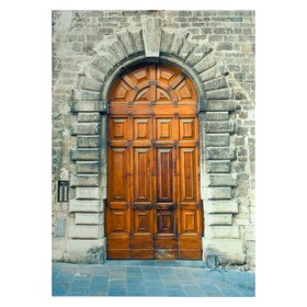 """Фотофон винил """"Дверь в замок"""" 210х150 см"""