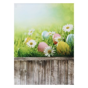 """Фотофон винил """"Ромашки и крашенные яйца"""" стена+пол 80х125 см"""